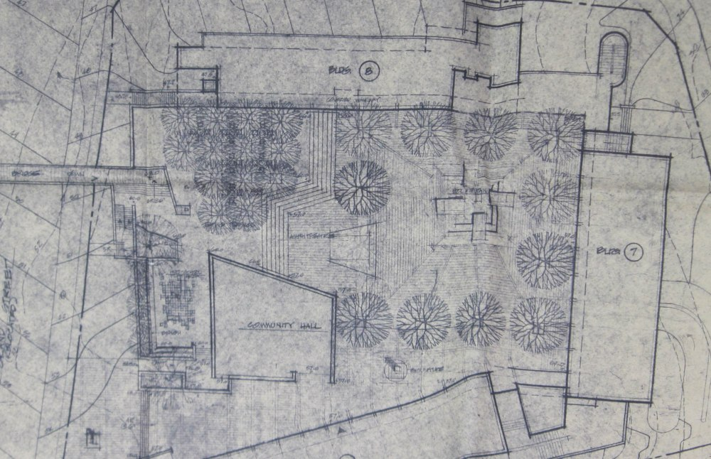 Detail from preliminary site plan, NYS-137. ACHOR.